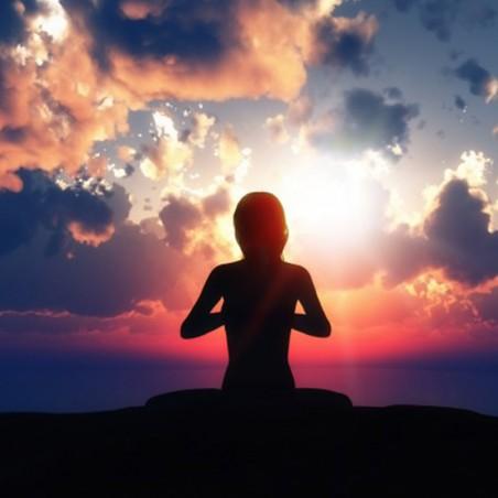 Devenez instructeur de yoga • Laureat Academy