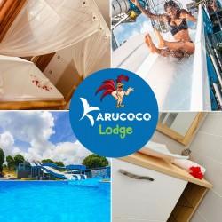 Karucoco Lodge séjour 2 ou 4 personnes : Détente et loisirs à partir d'1 nuit avec accès au parc illimité •