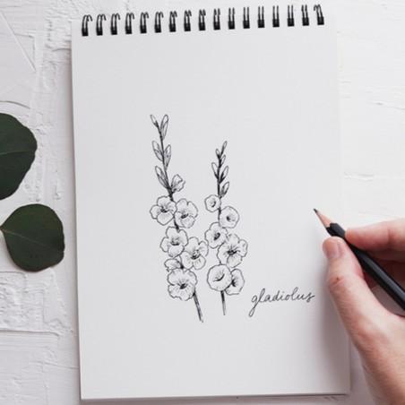 Formation dessin et illustration pour débutant •...