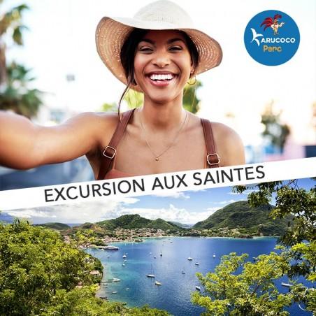 Excursion aux Saintes pour une journée découverte &...