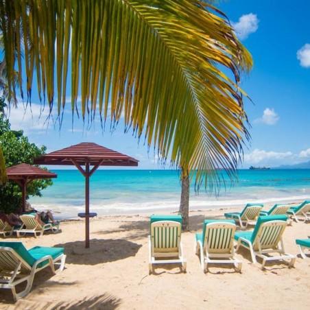 Journée détente en week end avec déjeuner et Accès plage...