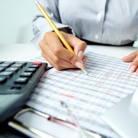 Formation comptabilité et gestion financière •...